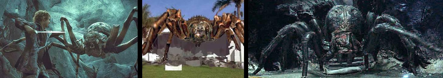 Spider montage